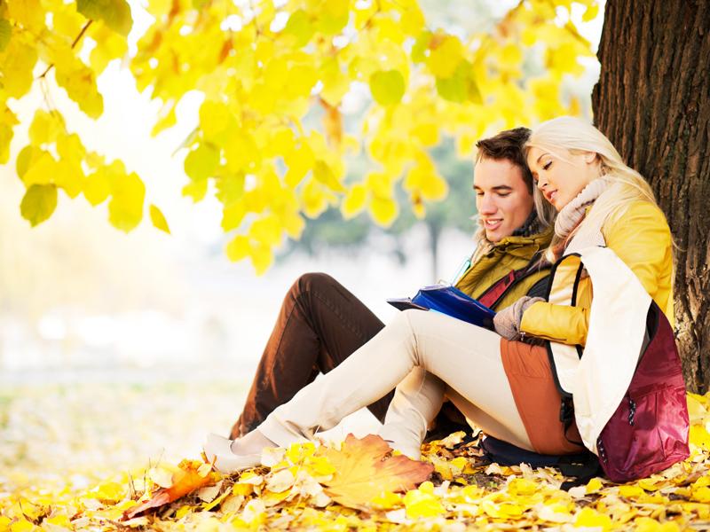 I libri da leggere in autunno for Libri da leggere